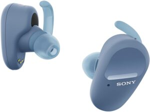 Earbuds with Ear Hooks